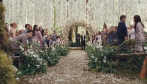 twilight wedding e picture does not do it justice the whole thing was soooo pretty crépuscule mariag